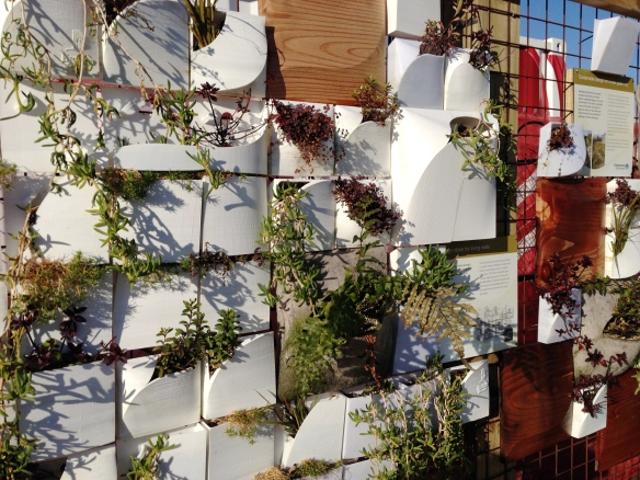Christchurch's Urban Living Wall